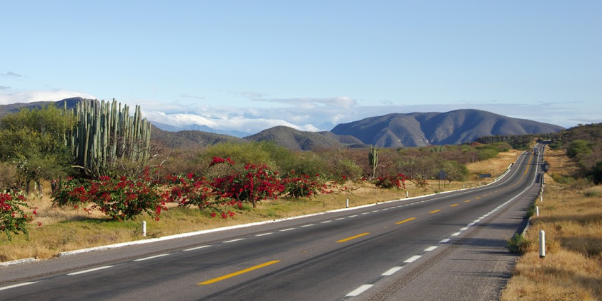Mexican Routes | Free Mexico Travel Guide and Travel Information